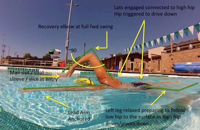 Total Immersion Swimming: Learn How To Swim Better, Faster ...